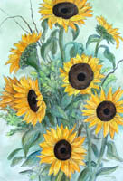Heather's Sunflower